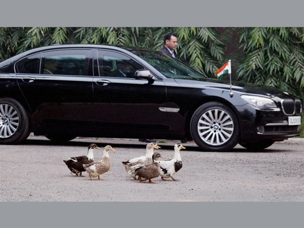 Ducks are seen near the car of Prime Minister Manmohan Singh who arrives to pay tribute to the mortal remains of Minister of State V Narayanasamy's wife Kalaiselvi who died in New Delhi on January 4.