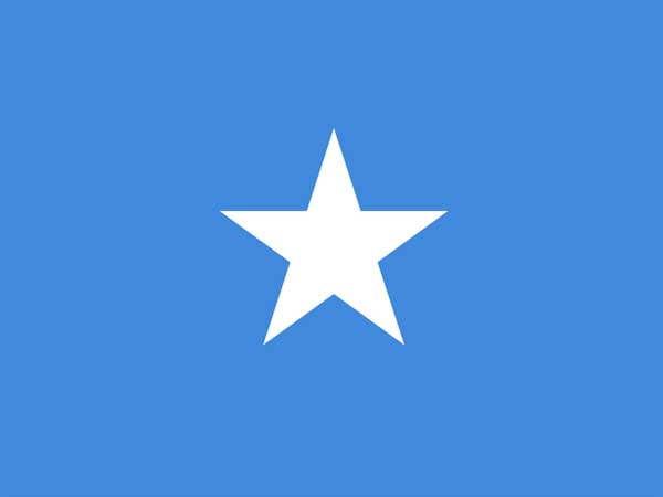 Somalia: Eight militants killed