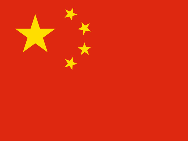 Chinese man sues government