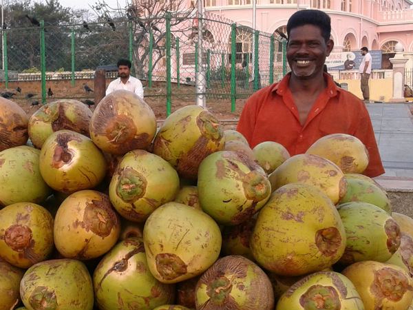 Chellappan, Coconut vendor - 48 years