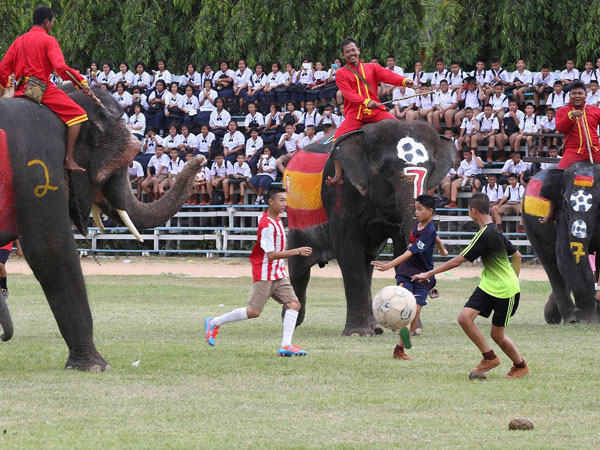 Thai youths fight for the ball with elephants