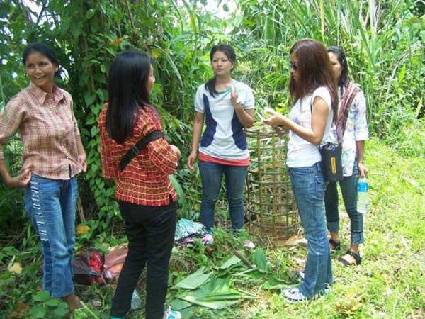 Green Mizoram Day observed
