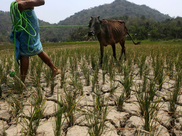 EL Nino a challenge in front of Modi