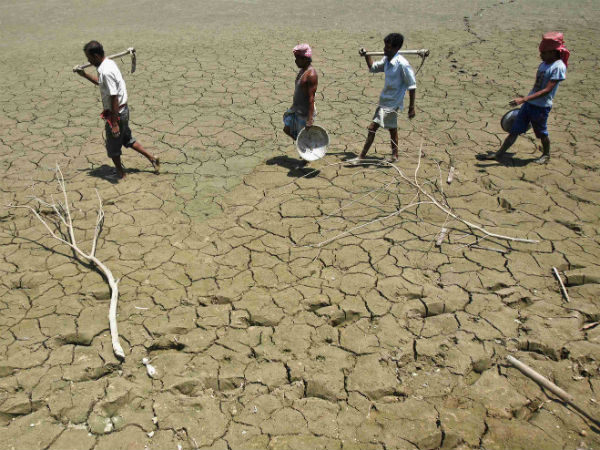 Drought like situation has created problem of livelihood among State farmers.