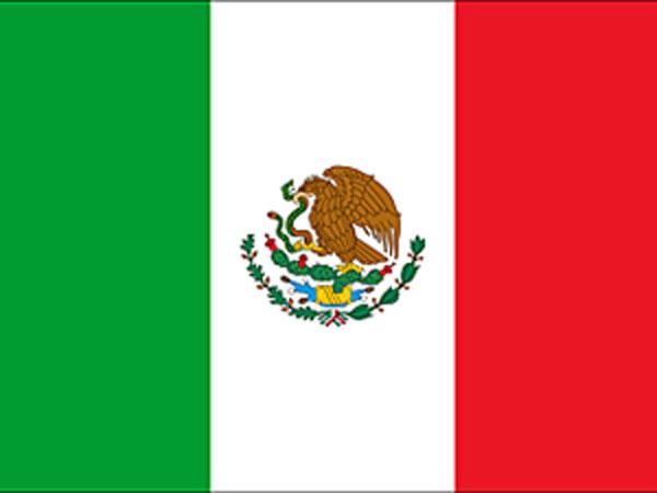 Mexico cargo train derails, one killed