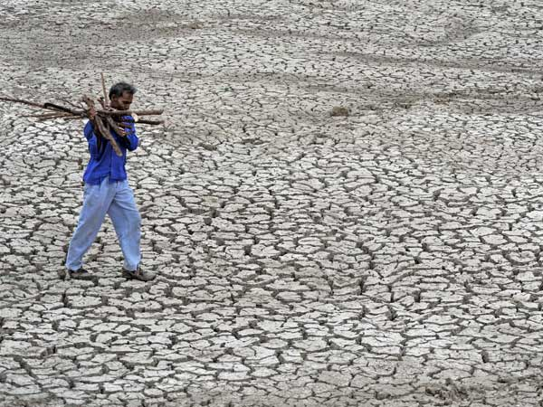 A man carries fire-wood as he walks on a parched field