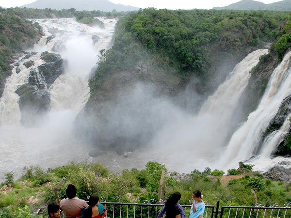 Gaganachukki waterfall regains its glory during rainy season