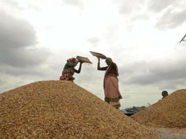 A United Nations body too has supported India's tough stand at the World Trade Organisation on the food security issue.