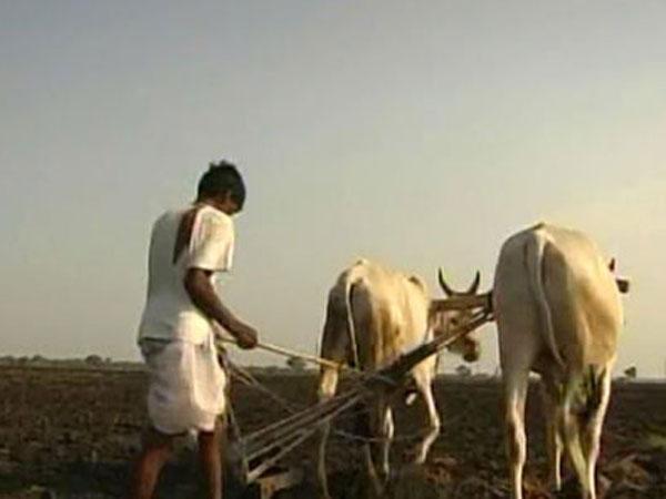 Vidarbha region farmers protest over long pending demands