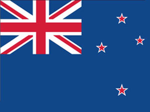 5.5 magnitude earthquake shakes NZ