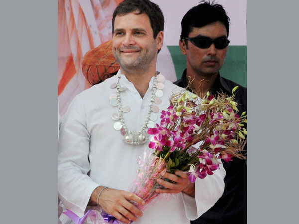 Congress Vice-President Rahul Gandhi during an election rally