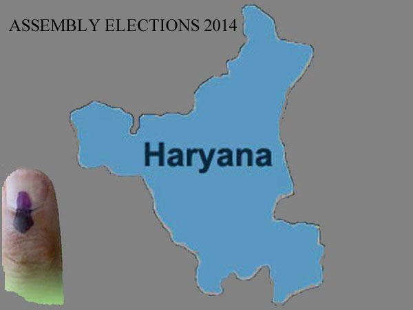 Haryana sees healthy voter turnout