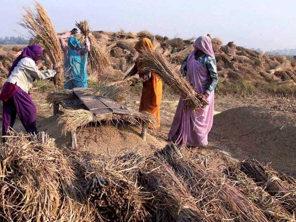 Women fight climate change better