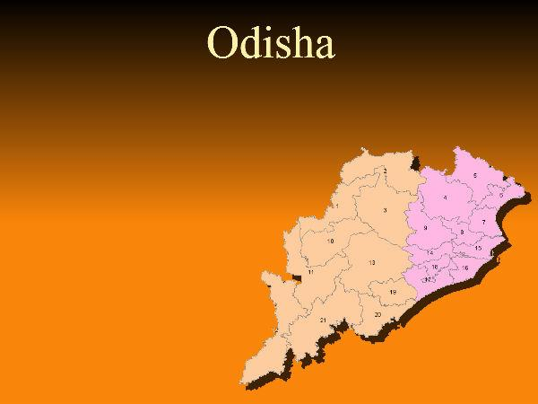 Odisha-born to contest US Senate poll