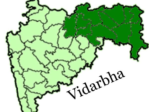 Separating Vidarbha is like mother-child separation: Shiv Sena