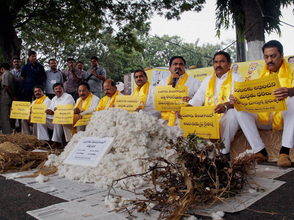 Telangana TDP MLAs staging a protest with damaged crops