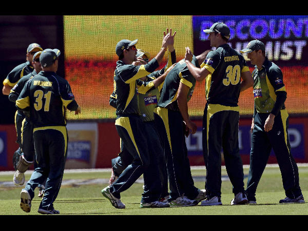 Australian players celebrate a wicket