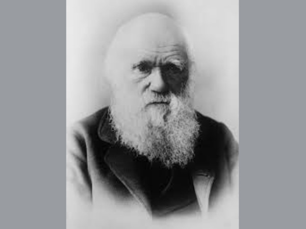 Darwinism and the American Eugenics Movement