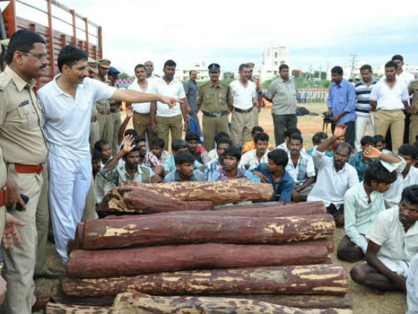 Andhra Pradesh govt earns Rs.991 crore from e-auction of red sanders logs.