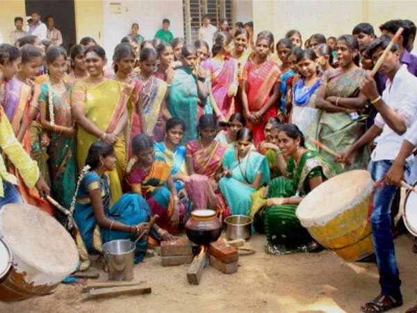 Pongal celebrated with gaiety and fervour in Puducherry - Oneindia