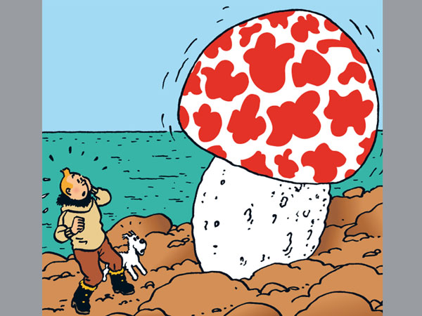 Iconic Tintin cover fetches 2.5 mn euros