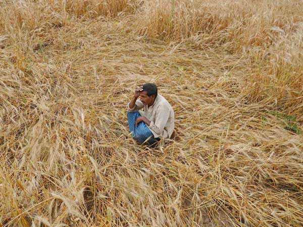 UP Govt denies farmers' suicide in state
