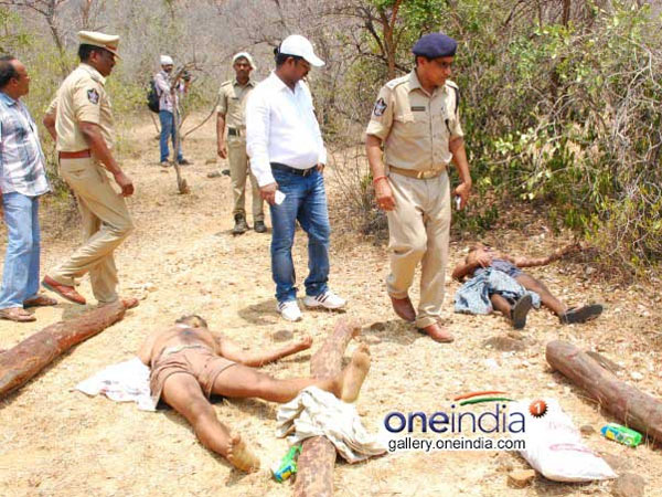 Sandalwood: 'Encounter was not planned'