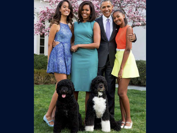 Unique marriage proposal for Barack Obama's daughter; Cows ...