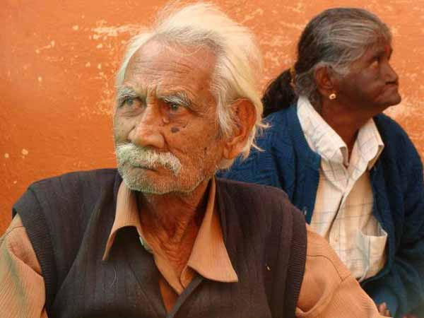 Over 65 per cent elderly face neglect in old age: Study.