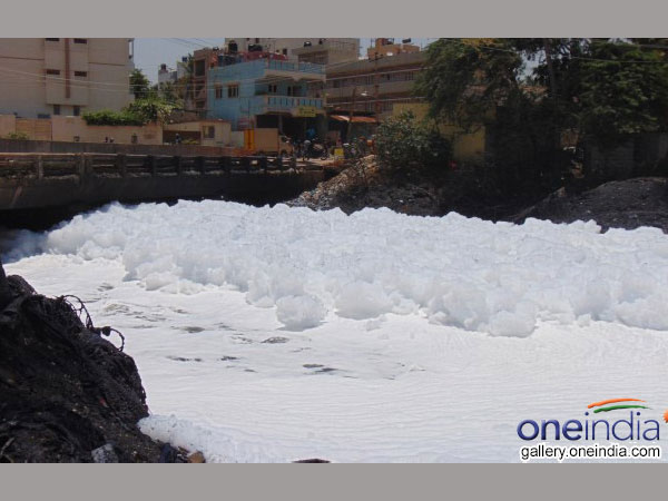 Toxic foam rises again in Bellandur Lake