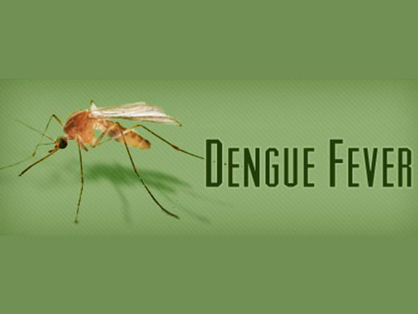 AAP govt's plan to control dengue menace