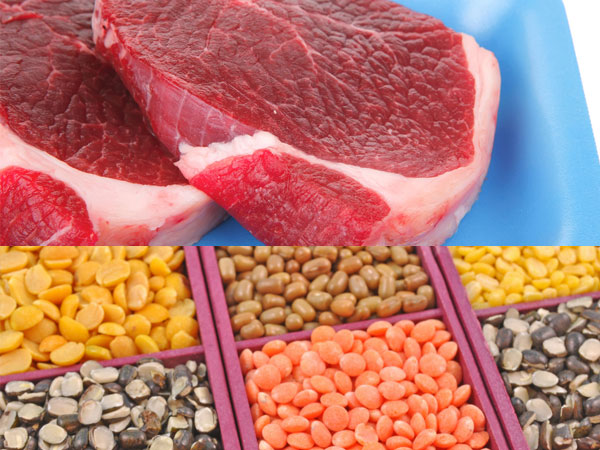 pulses-beef