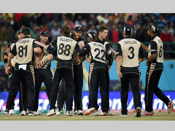 New Zealand players celebrate a wicket during World T20 2016