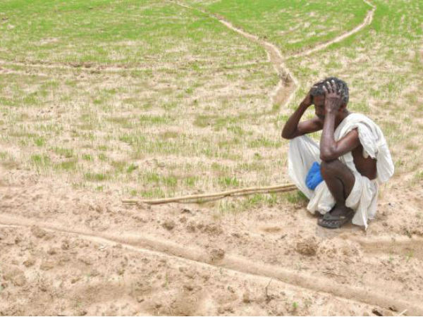 Scientific methods can tackle drought