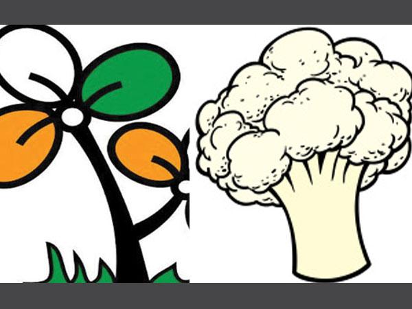 Kerala Polls Trinamool Gets Cauliflower As Poll Symbol Oneindia News