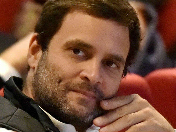MP BJP leader announces Rs one lakh reward for locating Rahul Gandhi.