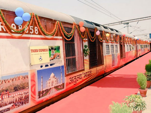 Tiger Express: A blissful experience
