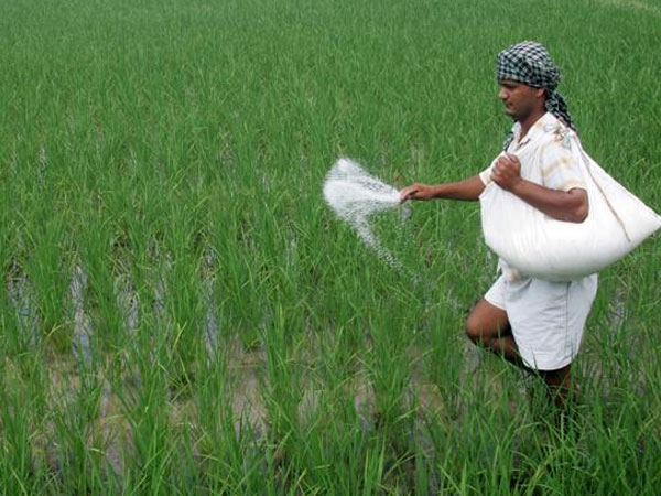 Price of Fertilisers Comes Down