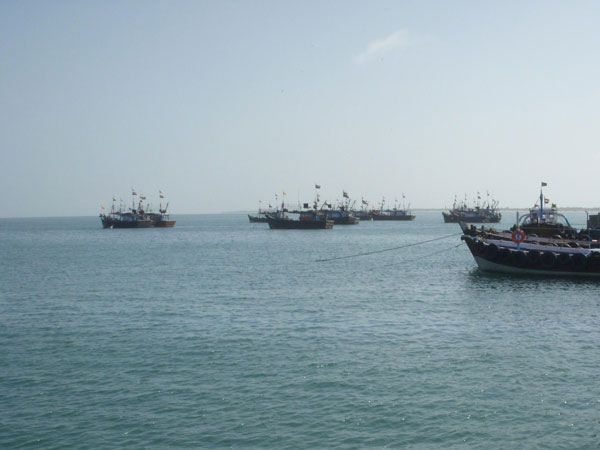 Sri Lanka arrests 16 Indian fishermen.