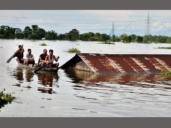 Flood In Am Ody Bats An Eye
