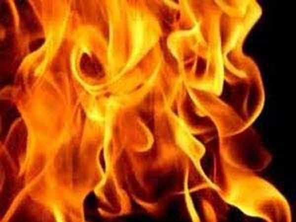 Rajasthan: 20-year-old woman burnt alive for protesting against tree felling