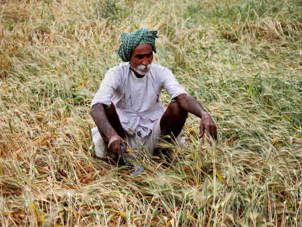 Nabard sanctions loan to help farmers