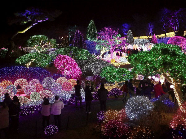 South Korea attracts tourists ahead of Christmas