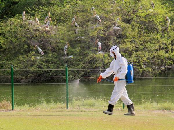 H5 N1 containment