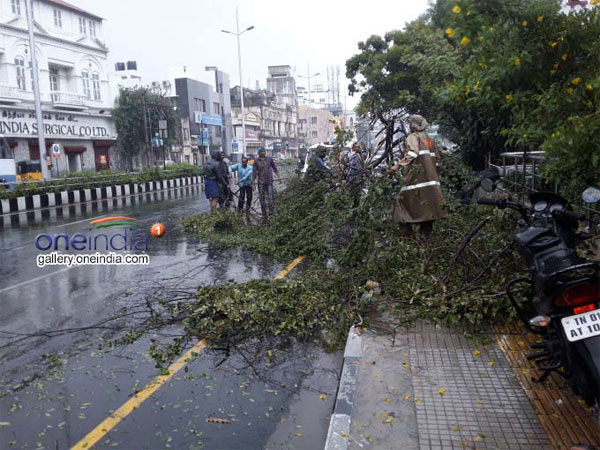 Cyclone Vardah: Two killed in TN