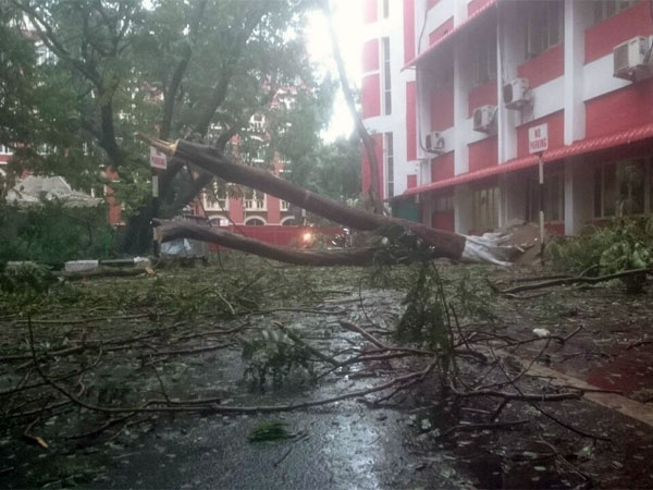 Effects of Cyclone Vardah