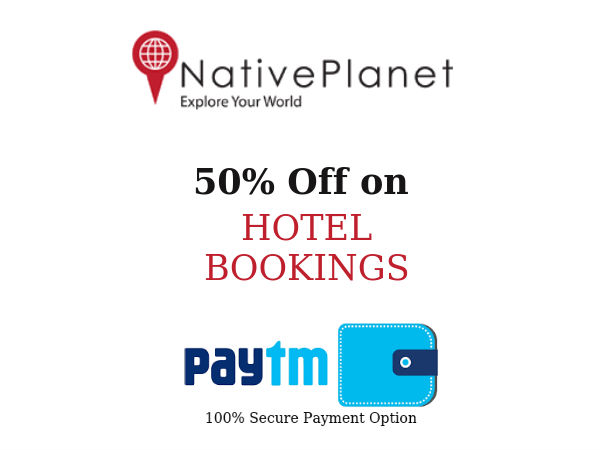 Hotel Bookings With Native Planet Is it Safe? 5 Reasons Why You Should Try.