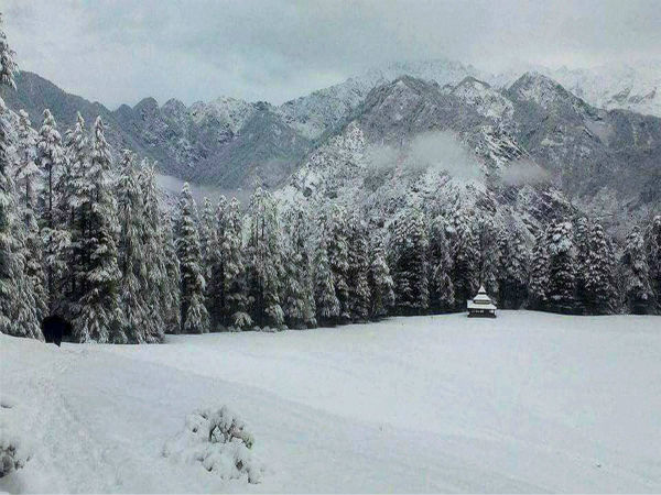 J&K: Avalanche hits army camp, five body recovered