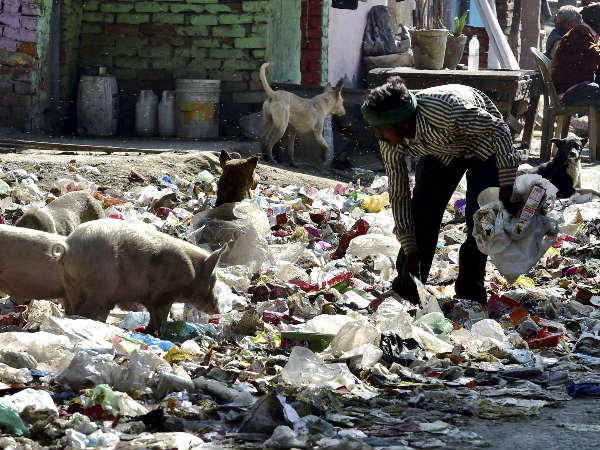 NGT pulls up government over garbage mess in Delhi