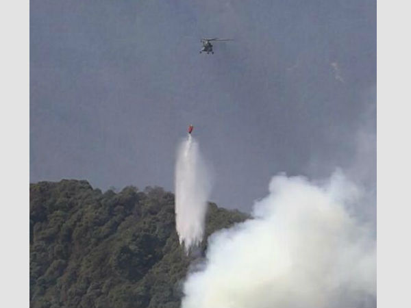 IAF choppers carry out ops to douse fire
